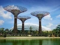 シンガポール/ガーデン・バイ・ザ・ベイ/イメージ