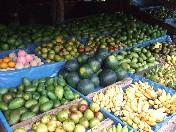スリランカは果物種類が豊富です