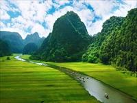 どこか懐かしいベトナムの田園風景
