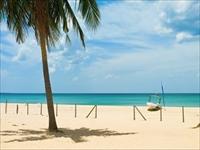 美しいビーチ /イメージ