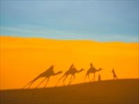 サハラ砂漠/イメージ