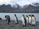 南極クルーズ02