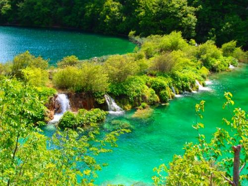 プリトヴィツェ国立公園(クロアチアツアー