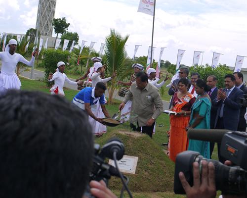 ワンワールド加盟記念植樹