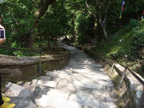 Vajra Yogini Temple6