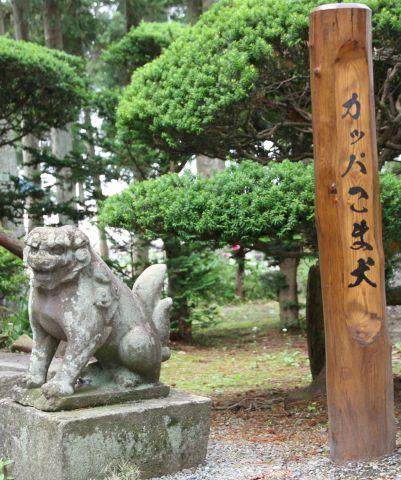 常堅寺 河童の狛犬