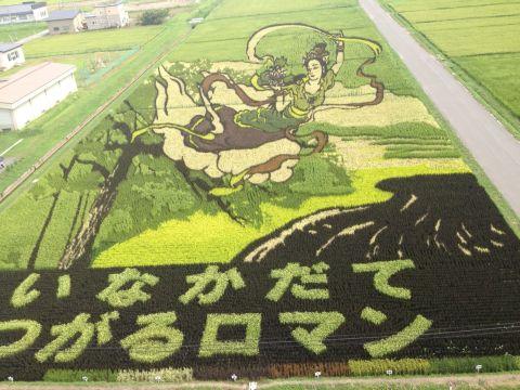 第1田んぼアート富士山と羽衣伝説