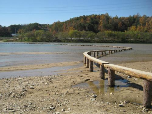 ムソム村の一本橋
