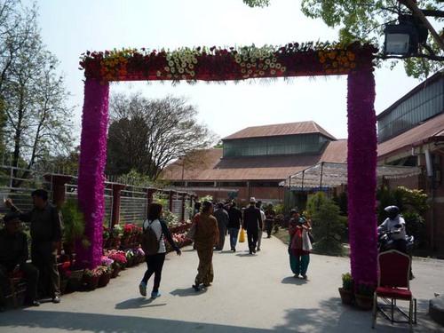 Flora Expo 1