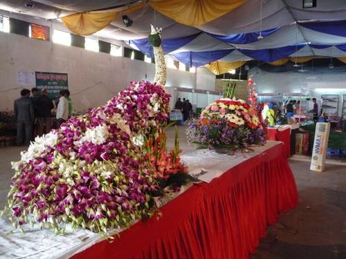 Flora Expo 6