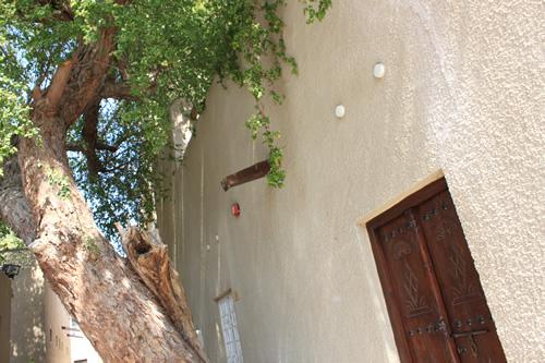 ときどき見かける低いドア