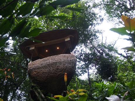 treepot