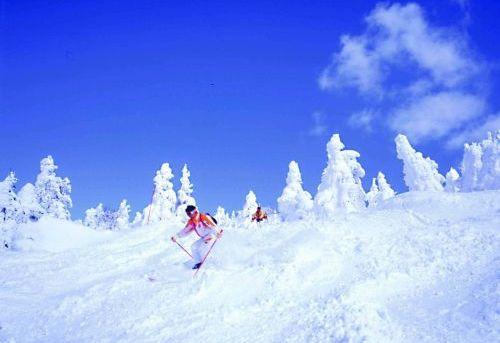 八甲田スキー場2