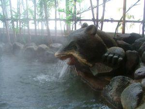 打当温泉クマの湯口