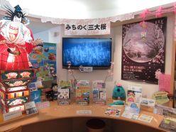 桜の企画展1