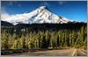 ◆夏休みはアメリカ・オレゴン州ポートランドに行ってみませんか◆ 全米が注目するグルメシティ!感動的な大自然!一度行ったらやみつきになるNEWデスティネーションをみっちり紹介。