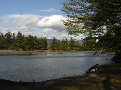 毛越寺 大泉が池1