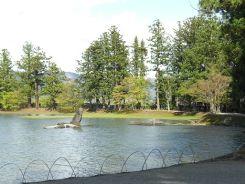 毛越寺 大泉が池2