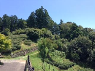 熊野古道44