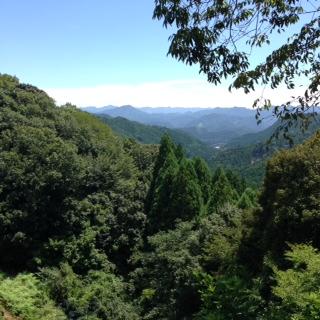 熊野古道52