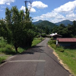 熊野古道55_1