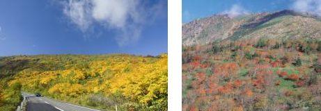 八幡平と早池峰山