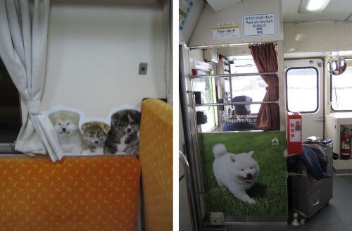 犬っこ列車 車内-7