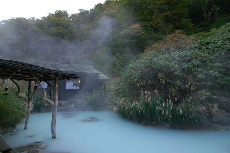混浴露天風呂 鶴の湯