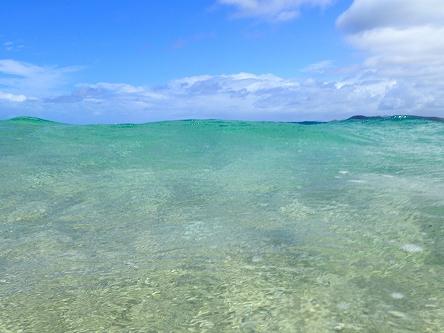 ビーチ透明