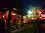 王子神社と桜