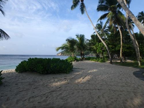 朝のビーチ1