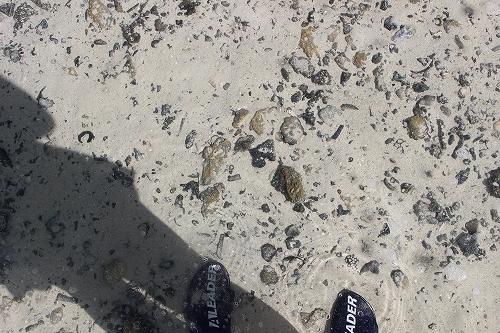 水の中の石