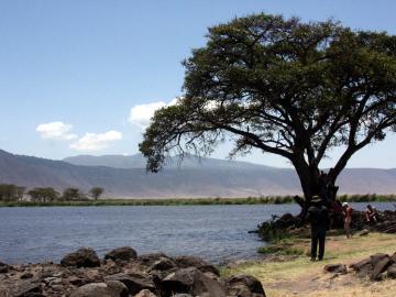ンゴイトキトクの泉