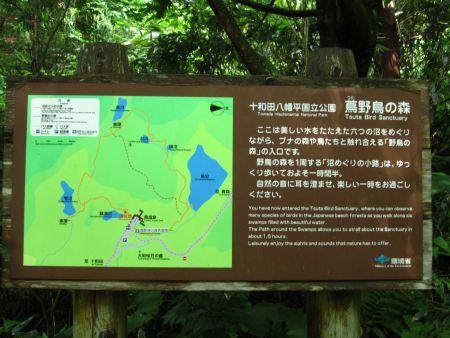 蔦野鳥の森