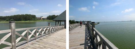 鶴の舞橋写真4