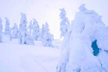 森吉山樹氷1