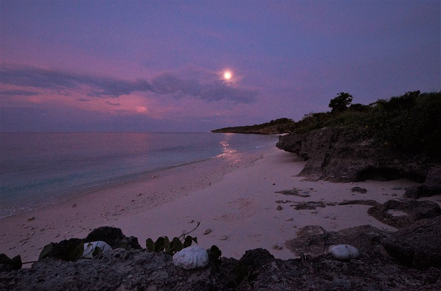 お月さんと夕焼けのコラボレーション