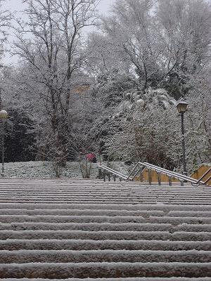 ローマ雪景色2