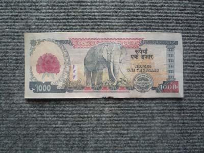 1000ルピー ウラ