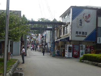 桜山神社参道