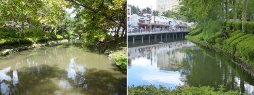 鶴ヶ池と亀が池