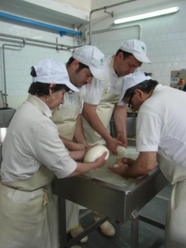 モッツアレッラチーズ工房、
