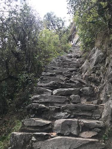 マチュピチュ山10