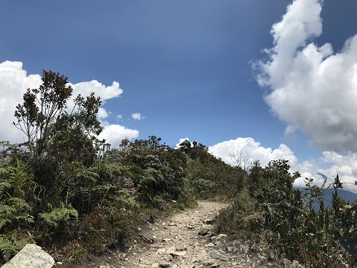 マチュピチュ山14