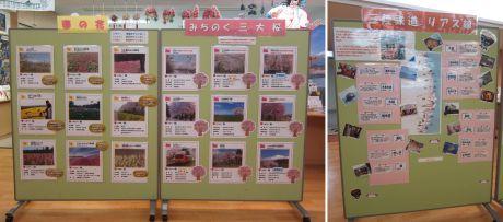 桜企画展2