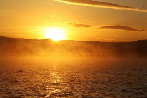 朝もやに包まれるナイバシャ湖