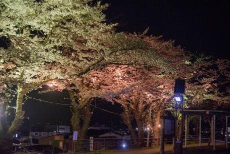 巽山公園ライトアップ