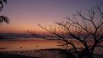 サムイ島の夕景