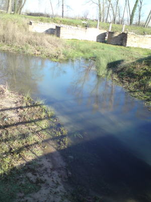 dionディオン遺跡に流れる小川