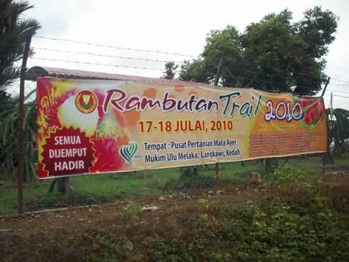 Rambutan2010